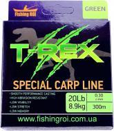 Волосінь Fishing ROI T-Rex Special Carp Line Green 300м 0.3мм 8.90кг 48-00-030