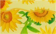 Скатертина Соняшник вініл 137x183 см жовтий Lotti