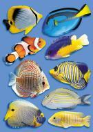 Декоративна наліпка Рибки