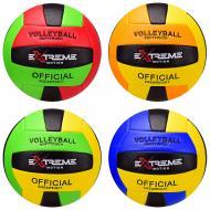 М'яч волейбольний в асортименті VB2123