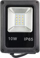 Прожектор DDH DDH-10 10 Вт IP65 чорний 17110