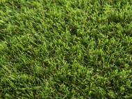 Ковролін TOSCANA 30 green 4 м