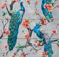 Плитка Tiger Teide peacocks 75x75
