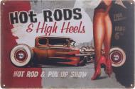Табличка жестяная печатная Hot rods 20x30 см разноцветный