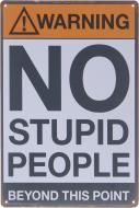 Табличка жестяная печатная No stupid 30x20 см разноцветный