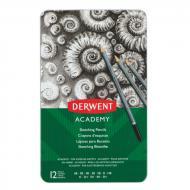 Набір олівців чорнографітних Academy Sketching 6B-5H 12 шт. 2301946 Derwent