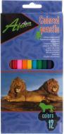 Олівці кольорові Africa E11610 12 шт. Economix