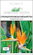 Насіння Професійне насіння стрелітція королівська Райський птах 3 шт.