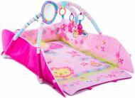 Розвиваючий килимок Fitch Baby Активна гімнастика JJ8837