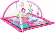 Розвиваючий килимок Fitch Baby JJ8842