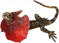 Игрушка Lanka Novelties Ящерица плащеносная 55 см 21550