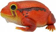 Игрушка Lanka Novelties Лягушка-помидор 27 см 21484