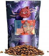 Кава в зернах Trevi Арабіка Ефіопія Сідамо 250 г (4820140050828)