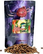 Кава в зернах Trevi Арабіка Ґватемала Антігуа 250 г (4820140050699)