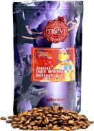Кава в зернах Trevi Арабіка Індія Мунсонд Малабар 250 г (4820140050866)