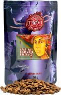 Кава в зернах Trevi Арабіка Колумбія Ексельсо 250 г (4820140050859)