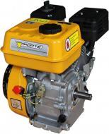 Двигун бензиновий Forte F210GT-25