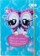 Папка для зошитів Kids Line Owl ZB.14980 ZiBi