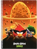 Блокнот  Angry Birds А5 48 арк AB03274 Cool For School