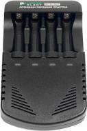 Зарядний пристрій PowerPlant для акумуляторів AA, AAA / PP-EU402 (AA620005)
