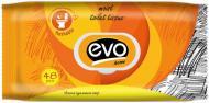 Туалетний папір вологий EVO 48 аркушів двошаровий