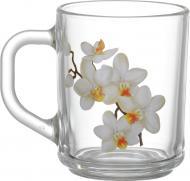 Набір чашок Біла орхідея 200 мл 6 шт. 86004149 GalleryGlass