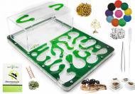 Ферма муравьиная трехслойная Марко Амазонка комплект для новичка