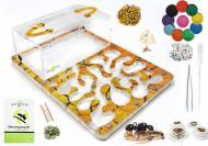 Ферма муравьиная трехслойная Марко Сахара комплект для новичка