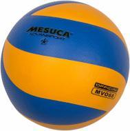 Волейбольний м'яч Mesuca MV068 р. 5