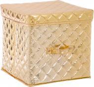 Короб для зберігання золотистий 200x200x200 мм