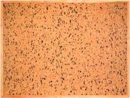 Дошка коркова ТСО Класік 100х70 см (чорно-біла крапка)