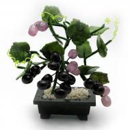 Виноградная лоза Arjuna (44388)