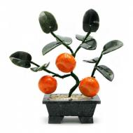 Дерево мандарин Arjuna 3 плода (44399)