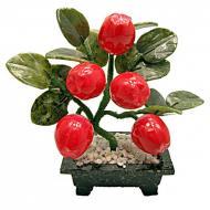 Яблоня Arjuna 5 плодов (44430)