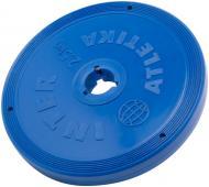Диск InterAtletika для грифа 2,5 кг SТ 521-3