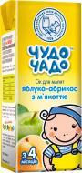 Сок Чудо-Чадо Яблочно-абрикосовый с мякотью и сахаром 200 мл 4820016251762