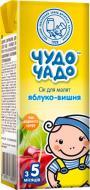 Сок Чудо-Чадо Яблочно-вишневый 200 мл 4820003688298