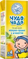 Сок Чудо-Чадо Яблочно-грушевый с мякотью и сахаром 200 мл 4820003687697