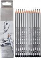 Олівці графітні шестигранні Н 12 шт Raffine 7000DM-12CB