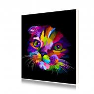 """Картина по номерам Lesko PH-9608 """"Радужный котёнок 1"""" 40-50 см (4767-14678)"""