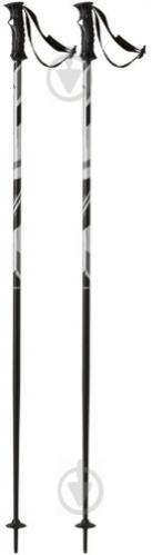 Горнолыжные палки TECNOPRO Carve 130 см - фото 1