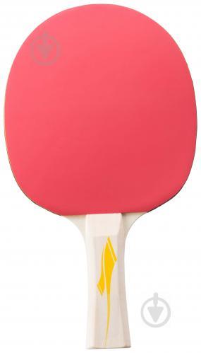 Ракетка для настольного тенниса TECNOPRO р.OS PRO 2000 288322-900050 - фото 1
