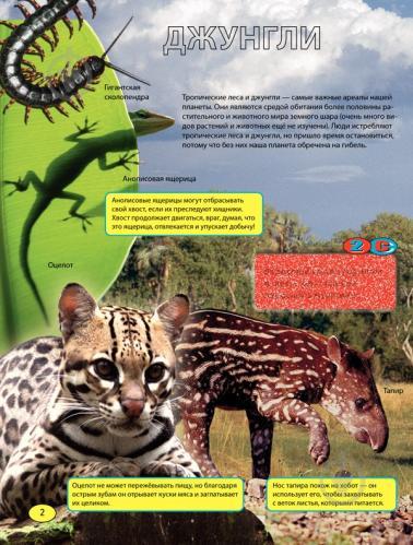 Книга «Невероятные животные» 978-966-14-6921-0 - фото 4