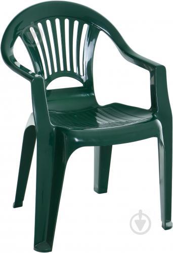 Стілець пластиковий Алеана Луч 56 см зелений - фото 1