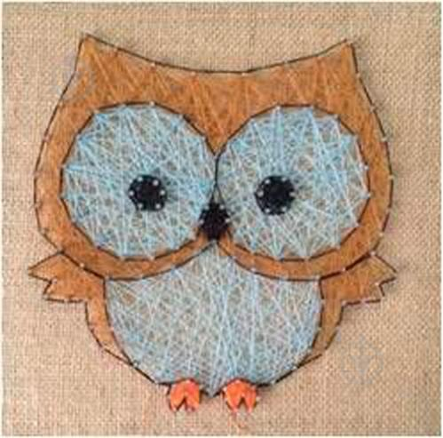 Фото Арт совы с закрытым глазом | 493x499