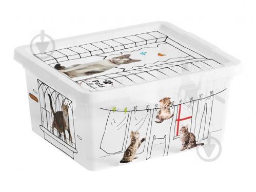 Ящик для зберігання KIS 247176 Pets Collectoin XXS 2 л 100x200x170 мм - фото 1