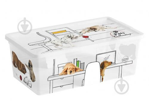 Ящик для зберігання KIS 247177 Pets Collectoin XS 6 л 120x340x190 мм - фото 1