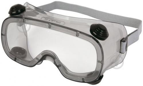 Очки защитные Delta Plus RUIZ1VI - фото 1