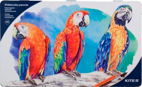 Карандаши акварельные Птицы 36 цвета (K18-1054) KITE - фото 1