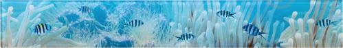Плитка Tiger Фриз підводний світ 50x7 - фото 1